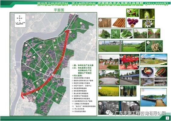 蕉岭县三圳镇招福村、芳心村和福北村优质特色农业发展总体规划